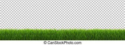 Grass Border Transparent background