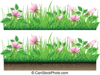 Grass Border with Flowers Isolated On White Background -...