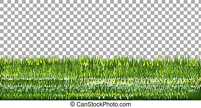 Grass Border With Isolated Background