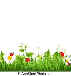 Grass Border With Ladybug And Leaf, Vector Illustration