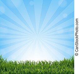 Grass Border With Sunburst