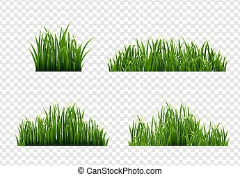 Grass Border With Transparent Background