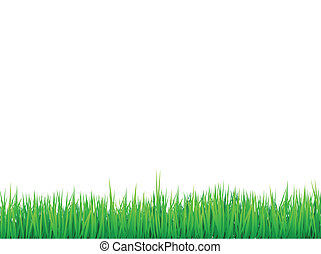 grass borders background, vector can be arranged for seamless effect