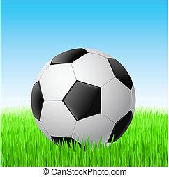 grass., boule football