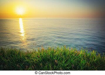 grass., ciel, mer, composition., coucher soleil, vert