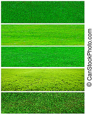Grass collage