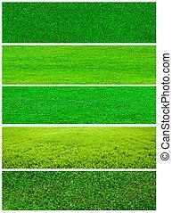 Grass collage