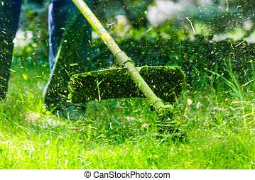 grass cutting in the garden with trimmer. lovely nature...
