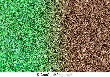 grass detail texture background