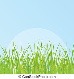 Grass detailed illustration background