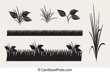 different types of grass and leaves over white background