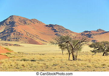 Grass, dune and mountain landscape near Sossusvlei,