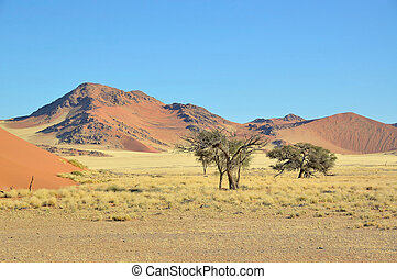Grass, dune and mountain landscape near Sossusvlei