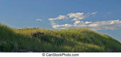 Grass Dunes - Sea grass growing on sand dunes with clouds in...