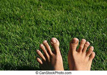 Grass Feet Series - Man's feet with green grass