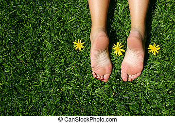 Grass Feet - Female feet on grass with sunny yellow daisies