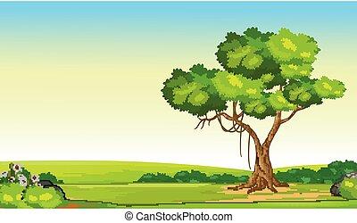 Grass Field Hill With Tree Cartoon Vector Illustration