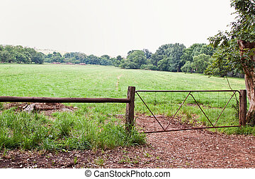 Grass field with gate
