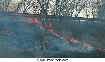 Grass Fire On The Roadside
