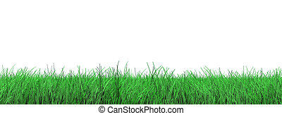 grass flooring on white
