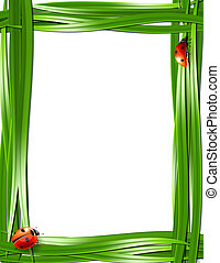 Grass frame with ladybugs.