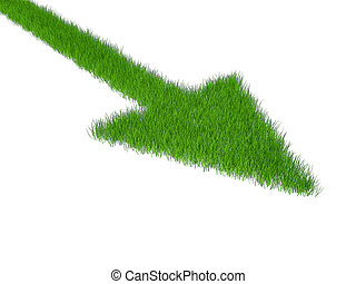 grass green pointer on a white background