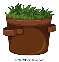 Grass growing in the pot