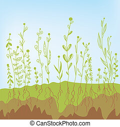 Grass growth with roots in the soil - agricultural...