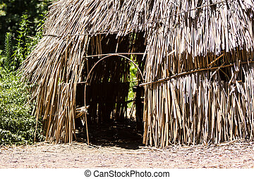 Grass hut - Dry grass hut in Africa