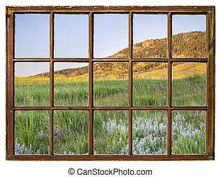 grass in Colorado foothills - window view
