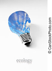 grass inside light bulb on white, concept of ecology