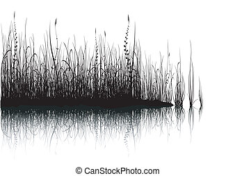 Black grass isolated on white
