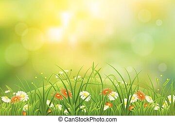 Grass nature background