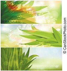 grass nature banner for vector Design