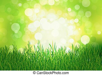 grass on a background of green beec