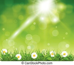 Grass on a background of green boke