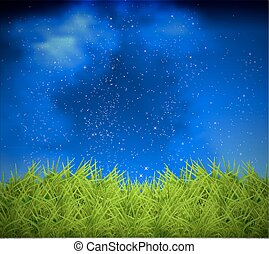 grass on a background of night sky