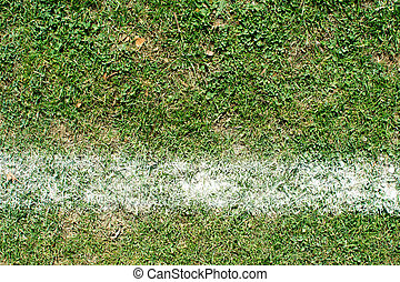 Grass on a football pitch with white line marking