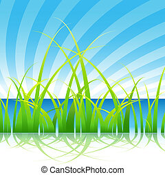 Grass on a Lake