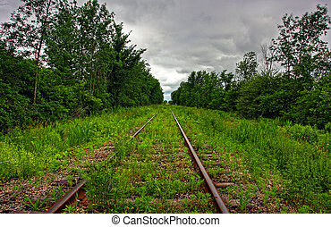 grass on a railway