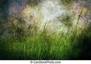 Grass on grunge background