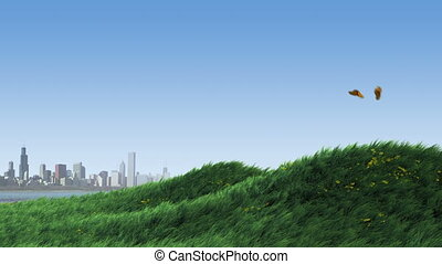 Grass on Hill by City - Butterflies fly across in the first...
