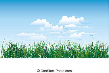 grass on sky background
