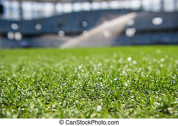Grass on stadium in sunlight. Closeup of a green football field. Wet stadium grass in the morning light during watering irrigation. Close up macro of soccer or football field. green grass field background. Empty stadium.