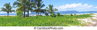 Grass on the beach, Nosy Iranja, Nosy Be island, Panoramique, Madagascar