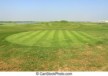 grass on the golf course