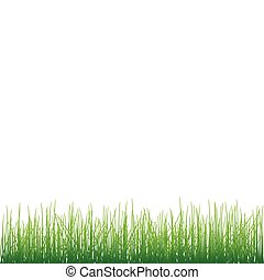 Grass on white background vector.