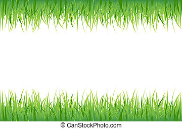 Grass On White Background, Vector Illustration