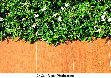 grass on wood floor