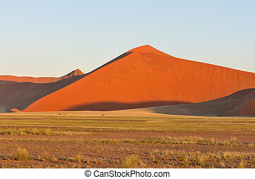 Grass, Oryx and dune landscape near Sossusvlei, Namibia
